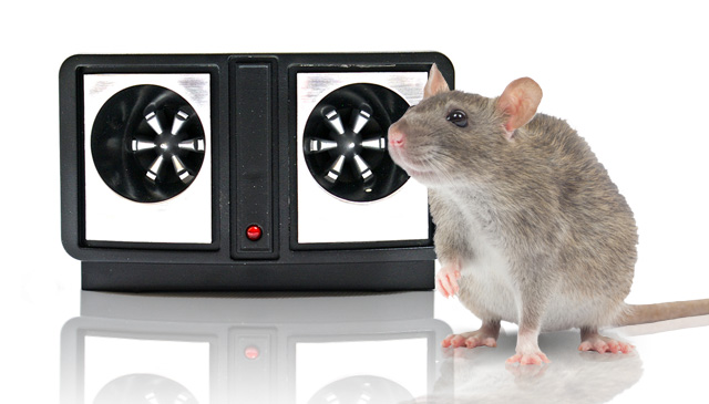 Каково влияние ультразвукового отпугивателя для грызунов на здоровье человека и животных?
